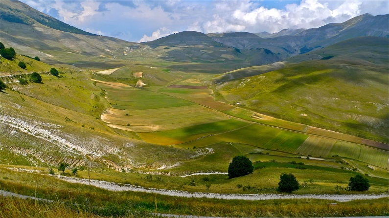 Fields of Lentils - Castelluccio di Norcia