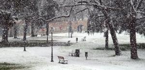 Snowing outside my window