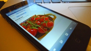 Tomatoes on my iPhone | ©Tom Palladio Images
