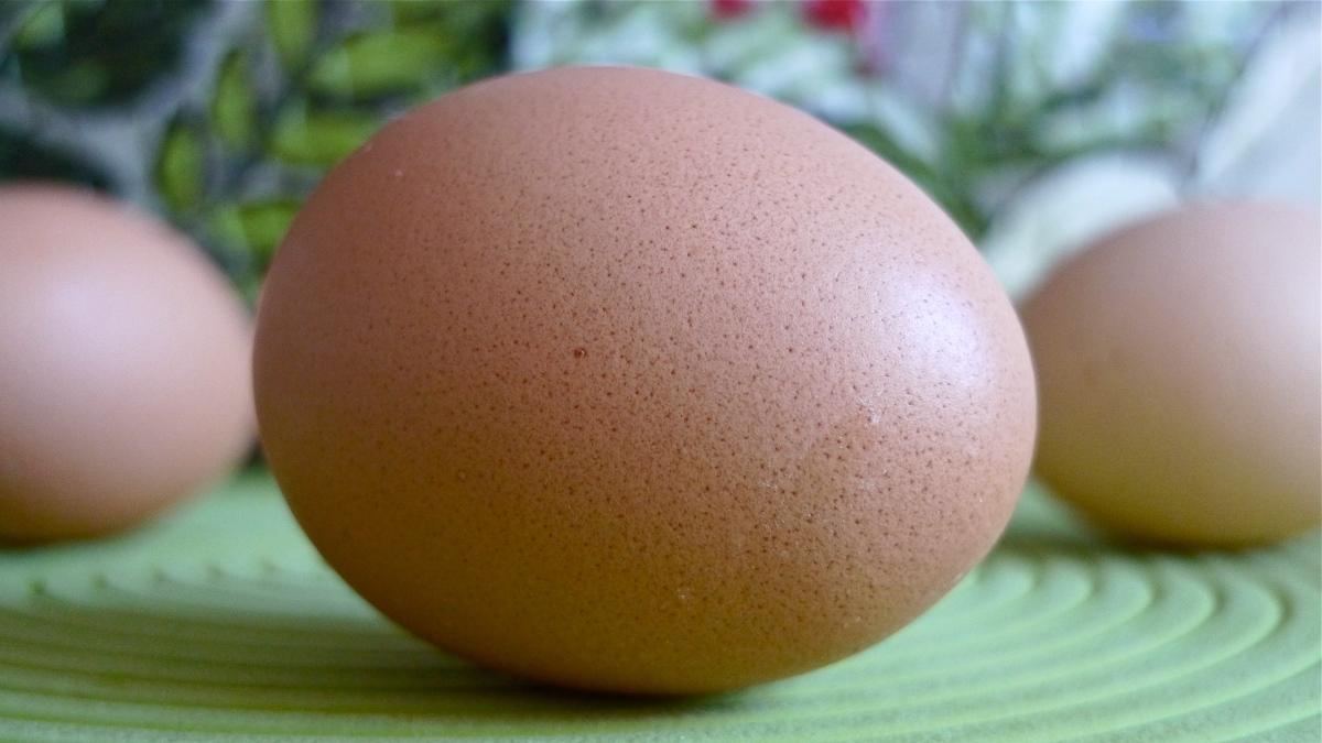Pimp My Egg