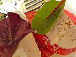 Mozzarella di bufala and tomato salad - Caffe Ristorante Garibaldi - Vicenza, Italy | ©Tom Palladio Images