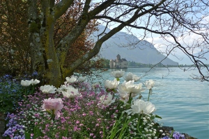 Flowers front Chateau Chillon - Lac Leman, CH | ©Tom Palladio Images