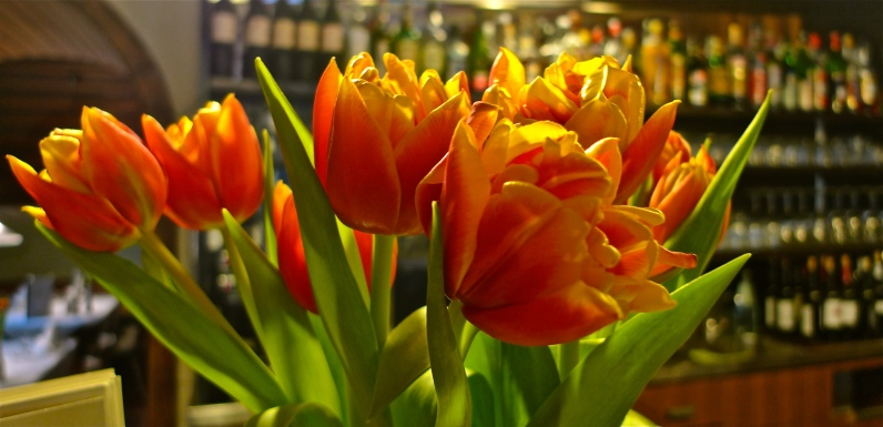 Behind the Tulips | ©Tom Palladio Images