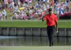 Tiger Woods at TPC  | photo ©2013 Erik Lesser/EPA