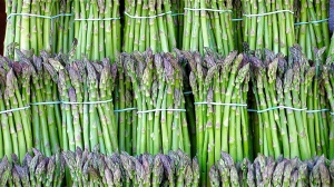 Asparagus bundled | ©2005 Liz West