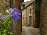 Beynac-et-Cazenac, FR | ©Tom Palladio Images