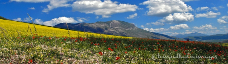 Mt. Sibillini - Castelluccio di Norcia, IT