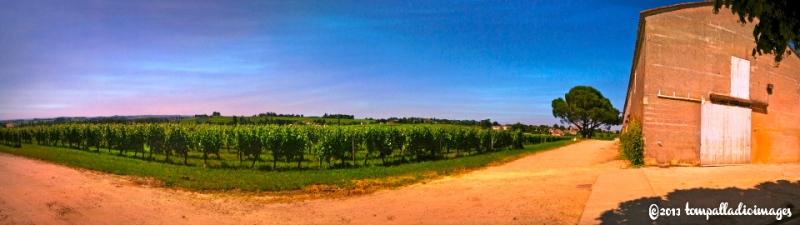 In Vin Veritas - St. Emilion, FR