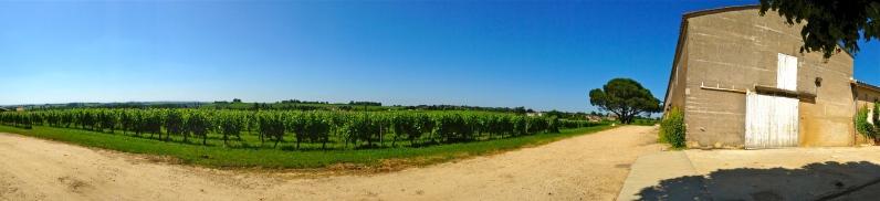 One of the many vineyards dotting the landscape - St. Emilion, France | ©Tom Palladio Images