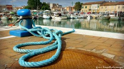 Something's Fishy in Senigallia, Italy | ©Tom Palladio Images