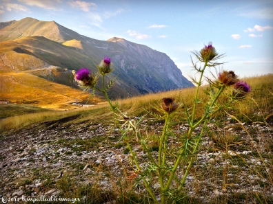 The Rooftop of The Apennines - Castelluccio di Norcia, Italy | ©Tom Palladio Images