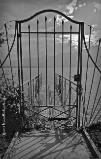 Lines to Patterns: Gray, Sepia, Gray & Living Color | ©Tom Palladio Images