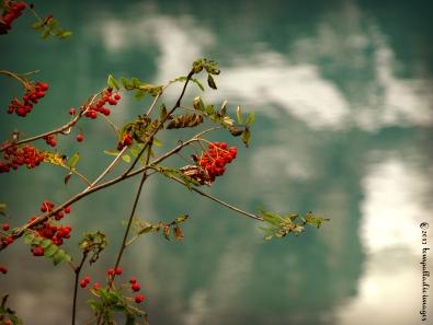 Under Doctor's Order: Lago di Molveno | ©Tom Palladio Images