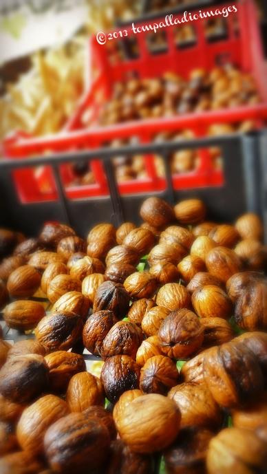 Rango: One Nutty Village | ©Tom Palladio Images