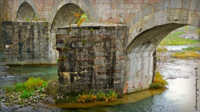 Under Doctor's Orders: Fiume Sarca | ©Tom Palladio Images