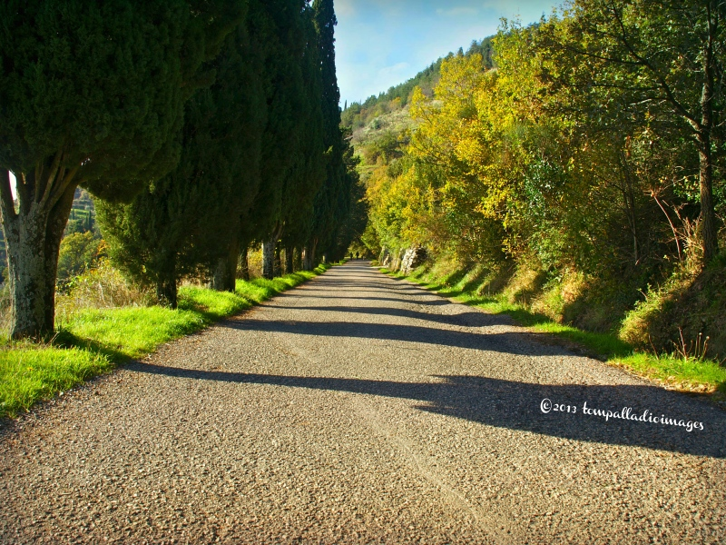 Country Roads: Under the Reconstructed Tuscan Sun | ©Tom Palladio Images