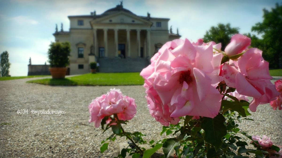 Framing Palladio: Villa La Rotonda
