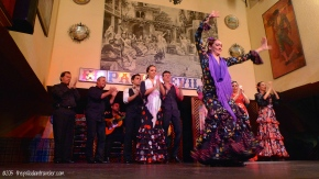 Iberian Adventure: Savoring Seville as We Wave Adios   ©thepalladiantraveler.com