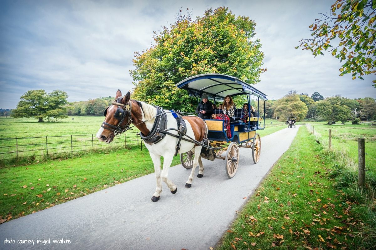 Treasures of Ireland: A jaunty-good Ride through Killarney National Park