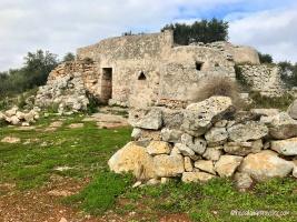 Abandoned Abodes_32WM