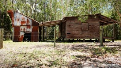 Australia_Everglades 100WM