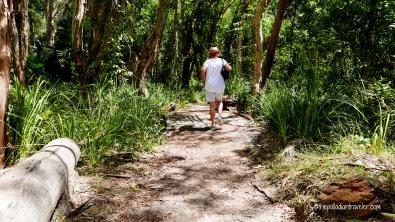 Australia_Everglades 103WM