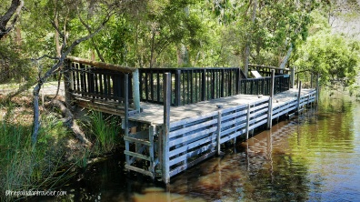 Australia_Everglades 105WM