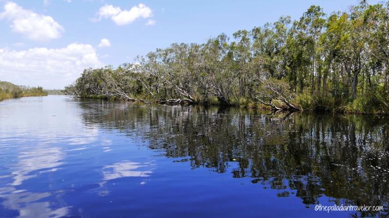 Australia_Everglades WM1000