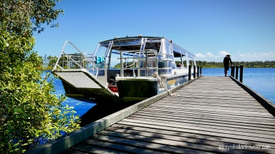 Australia_Everglades WM108